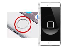 Oprava home tlačítka iPhone 6s+